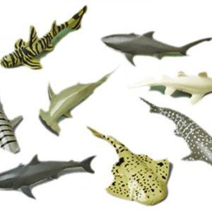 Sharks - Mini